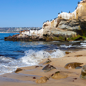 Kayak, Surf, Snorkel, and SUP Your Way to a Good Time at La Jolla Cove